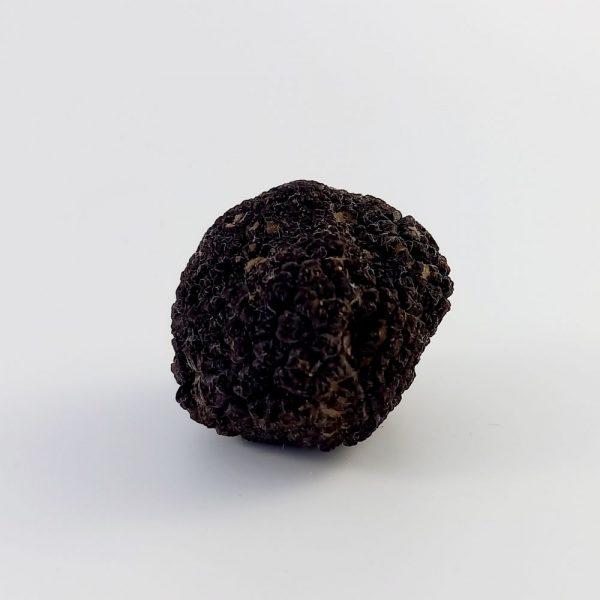 tartufo-nero-pregiato